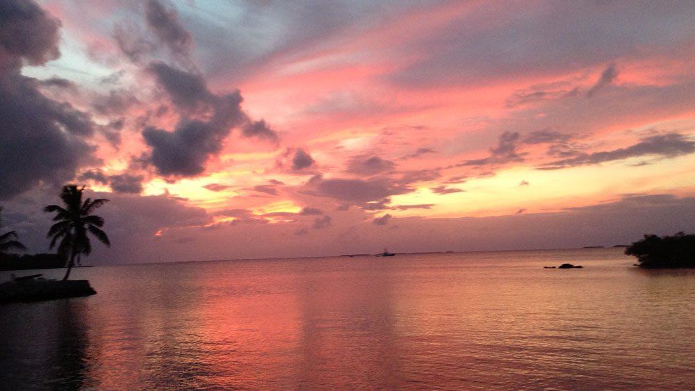 Gulf Wrecks with Captain Randy